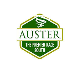 project auster logo